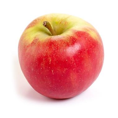 Delbare Appels - De Zuivelmand Blijham